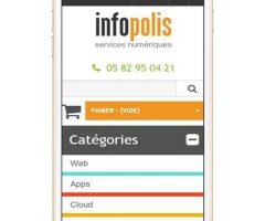 https://www.infopolis.fr/wp-content/uploads/2018/03/siteresponsivedesign-240x200.jpg